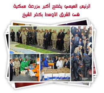 الرئيس السيسي يفتتح أكبر مزرعة سمكية فى الشرق الأوسط بكفر الشيخ