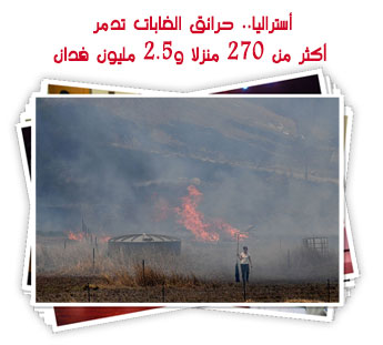 أستراليا.. حرائق الغابات تدمر أكثر من 270 منزلا و2.5 مليون فدان