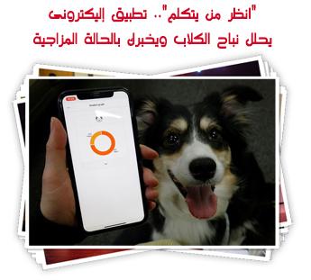 """""""انظر من يتكلم"""".. تطبيق إليكترونى يحلل نباح الكلاب ويخبرك بالحالة المزاجية"""