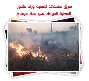 حرق مخلفات القصب وراء ظهور السحابة السوداء في سماء سوهاج