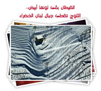الغيطان بقى لونها أبيض.. الثلوج تغطى جبال لبنان الخضراء