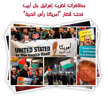 """مظاهرات لعرب إسرائيل بتل أبيب تحت شعار """"أمريكا رأس الحية"""""""