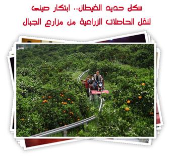 سكك حديد الغيطان.. ابتكار صينى لنقل الحاصلات الزراعية من مزارع الجبال