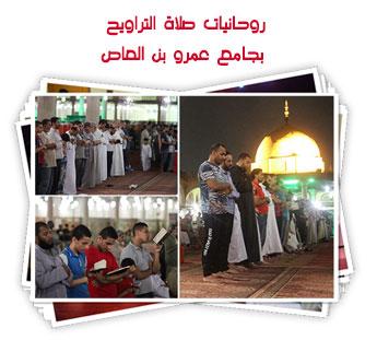روحانيات صلاة التراويح بجامع عمرو بن العاص