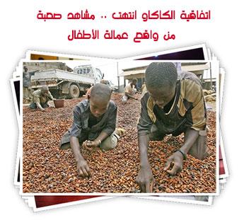 اتفاقية الكاكاو انتهت .. مشاهد صعبة من واقع عمالة الأطفال