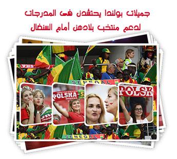 جميلات بولندا يحتشدن فى المدرجات لدعم منتخب بلادهن أمام السنغال