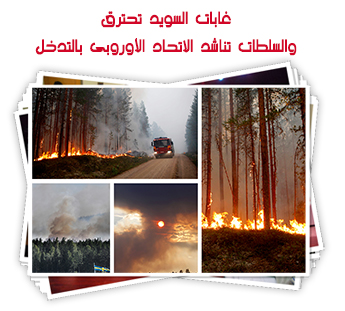 غابات السويد تحترق والسلطات تناشد الاتحاد الأوروبى بالتدخل