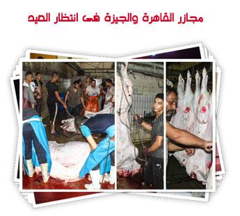 مجازر القاهرة والجيزة فى انتظار العيد