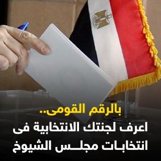 بالرقم القومى.. اعرف لجنتك الانتخابية فى انتخابات مجلس الشيوخ