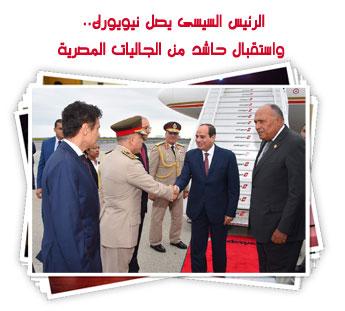 الرئيس السيسى يصل نيويورك.. واستقبال حاشد من الجاليات المصرية