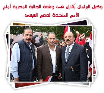 وكيل البرلمان يُشارك فى وقفة الجالية المصرية أمام الأمم المتحدة لدعم السيسى