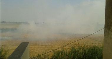 البيئة: استمرار مواجهة نوبات تلوث الهواء الحادة بطنطا والشرقية والقليوبية