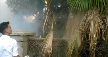 إصابة 4 مواطنين فى حريق اشجار بشارع الهرم