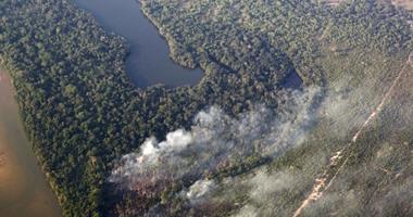 بالصور.. رجال الحماية المدنية فى البرازيل تسعى للسيطرة على حرائق الغابات