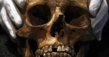 العثور على جمجمة أدمية تعود للعصر الرومانى بالجيزة