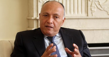 """""""الخارجية"""": يجب الحفاظ على مؤسسات الدولة السورية ووقف التدخلات الخارجية"""
