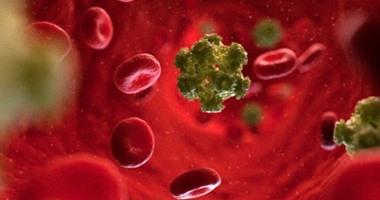 فيروس الورم الحليمى البشرى يرفع خطر الإصابة بأمراض القلب بنسبة 20٪