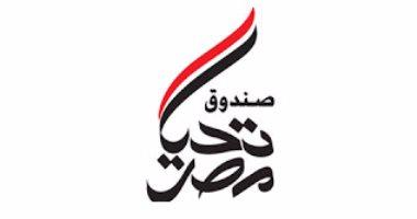 فيديو.. صندوق تحيا مصر يعلن القضاء على فيروس سى فى مصر قبل 2020