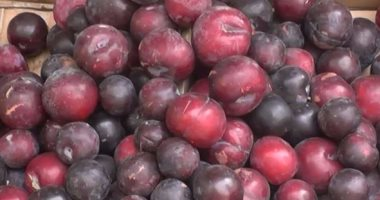 The health benefits of plum.. Prevents constipation and maintains bone health