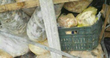 ضبط 123 منشاه غذائية بالشرقية بدون تراخيص وإعدام 9.5 طن أغذية فاسدة