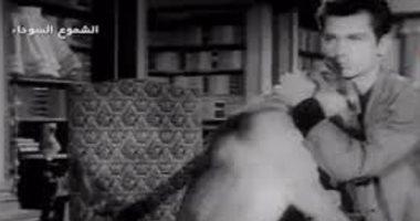 """أشهرهم """"روى"""" .. تعرف على أشهر 7 كلاب فى السينما المصرية"""