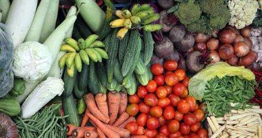 الزراعة: حملات إرشادية مكثفة على مزارع الخضراوات تجنبا لمخاطر درجات الحرارة