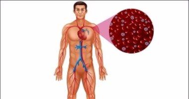 لتنشيط الدورة الدموية فى الجسم.. تناول هذه الأطعمة
