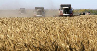 الجزائر تطالب روسيا بدخول سوق القمح الجزائرى