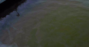 """مديرية شئون البيئة بالأقصر تنفى وجود أية """"بقع زيت"""" بنهر النيل"""