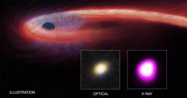 منح العلماء الذين التقطوا صورة ثقب أسود جائزة دولية.. اعرف التفاصيل