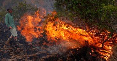 فيديو.. حرائق الغابات فى منطقة حظر تشيرنوبل تزيد من نسبة الإشعاع بالجو