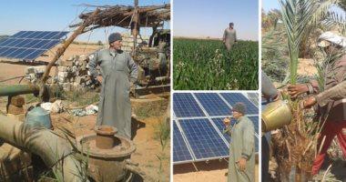 نقيب مهندسى الوادي الجديد: دربنا أعضاء لإنشاء محطات الطاقة الشمسية للمزارعين