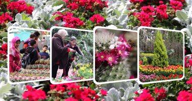 غدًا.. وزير الزراعة يفتتح معرض زهور الربيع بحديقة الأورمان