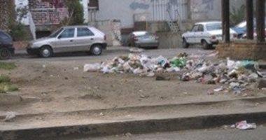 قارئ يطالب بتوفير صناديق لجمع القمامة فى شارع جسر السويس