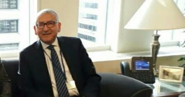 سفير مصر بأمريكا: اليوم الثانى للاستفتاء الأعلى إقبالا فى السفارة والقنصليات