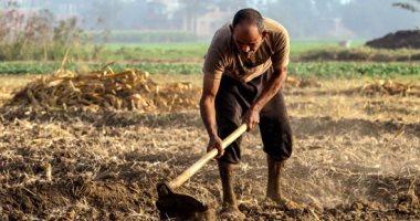 """""""قومى التنمية الزراعية"""": ثورة 30 يونيو البداية الحقيقية للاهتمام بالفلاح"""