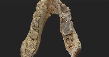 العثور على نصف فك للإنسان الأول عمرها 180 ألف سنة داخل كهف بإسرائيل 201705231224122412.j