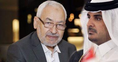 تحت الغُترة سيف.. سفير قطر يزور إخوان تونس ويهنئهم بنتيجة الانتخابات