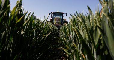 شركة أمريكية تستعين بالذكاء الاصطناعى لحماية المحاصيل من الأمراض