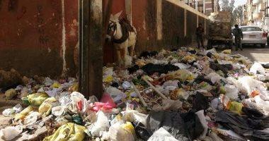 بالصور.. انتشار القمامة بشوارع وميادين أسيوط.. ونائب يتقدم بطلب إحاطة