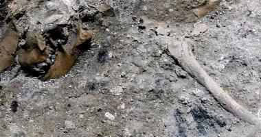 اكتشاف حفريات بشرية عمرها 300 ألف سنة شرقى الصين