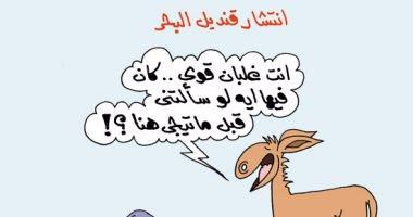 """""""قنديل البحر .. ضحكوا عليه وجابوه مصر"""".. بكاريكاتير """"اليوم السابع"""""""