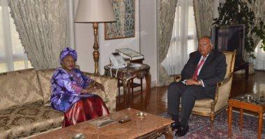شكرى يبحث مع وزيرة خارجية غينيا سبل مكافحة الإرهاب وحفظ السلم والأمن