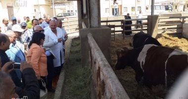 """نائب وزير الزراعة: """"بورسعيد"""" تنفذ الشكل الصحى المنشود للثروة الحيوانية"""