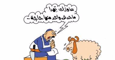 """مواقف وطرائف الجزار مع خروف العيد.. فى كاريكاتير """"اليوم السابع"""""""