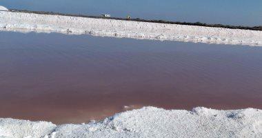 بالصور.. الرزق فى الملاحات.. عشرات الأطنان تصدر يوميا لأوروبا لإزالة الجليد