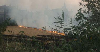 """""""البيئة"""" تشكر قراء """"اليوم السابع"""" وتنشر رسوم بيانية عن مكافحة حرق قش الأرز"""