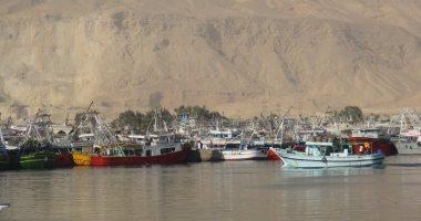 نقيب الصيادين: وقف الصيد بخليج السويس والبحر الأحمر اليوم لتنمية الثروة السمكية