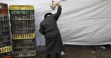 بالصور..طقوس غريبة..اليهود يتطهرون من خطاياهم بتمرير الدجاج على روؤسهم