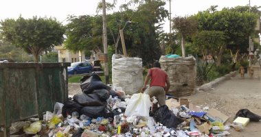 إصابة عامل نظافة بطعنة نباش قمامة شرق الإسكندرية